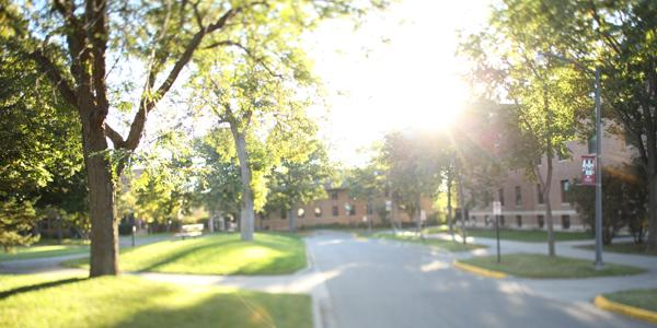 A college campus on a sunny day